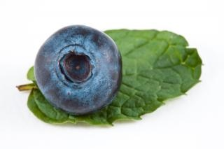 Blueberry and mint  nutritious