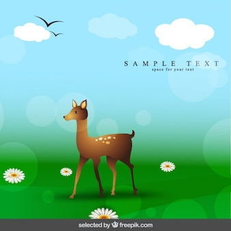 Bokeh background with fawn