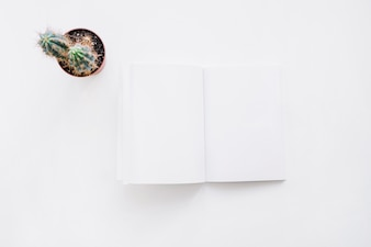 Booklet mockup with cactus
