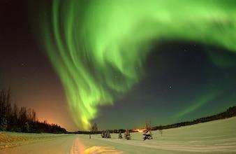Borealis alaska sky aurora wilderness