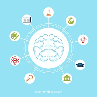 Brain with education icons