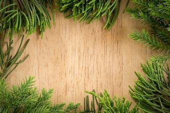 Branches arborvitae, Juniper branches on wood Christmas background