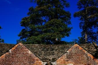 Bricked roof