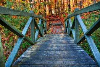 Bridge to fall   hdr