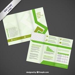 brochure design in green tones