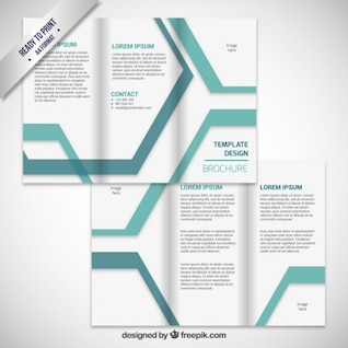 Brochure design with stripes