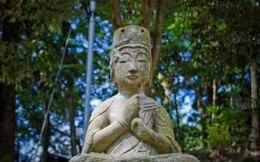 buddha statue  pray  buddha