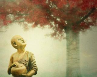 Buddha , statue