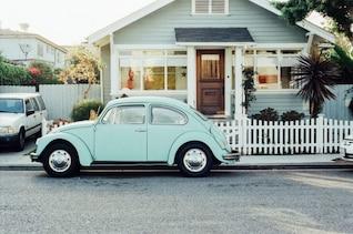 Bug on the street