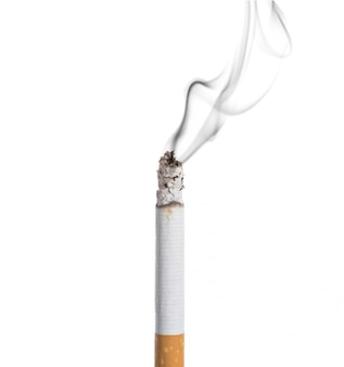 Burning cigarette on white background
