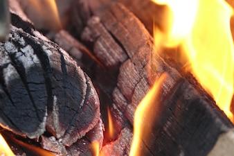 Burning trunks
