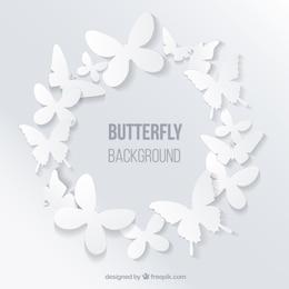 Butterflies frames