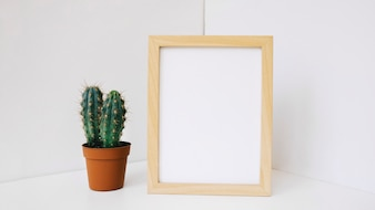 Cactus next to frame