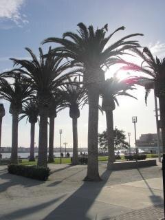 California, bayarea