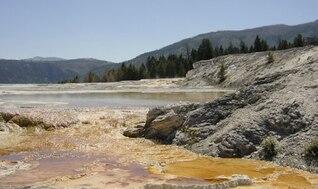 Calm golden water