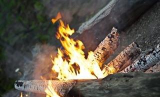 Campfire   outdoor