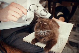 Cat looking at a man's glasses
