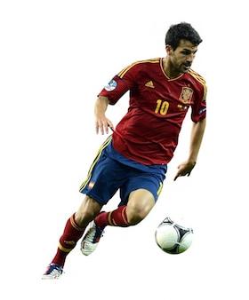 Cesc fabregas   spain national team