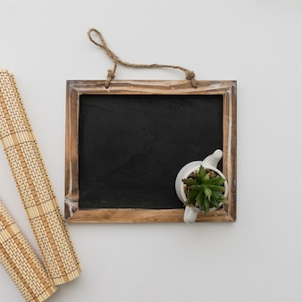 Chalkboard with plant top view