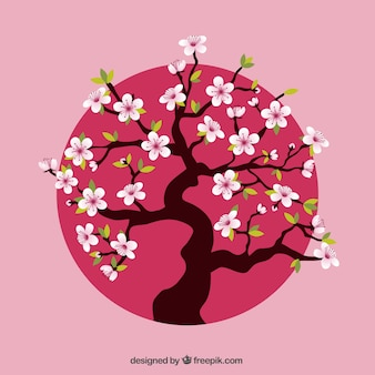Cherry tree over pink dot