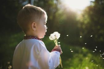 Child blowing a dandelion