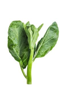 Chinese kale vegetable isolated on white background.