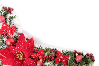 Christmas border with flowers