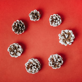 Christmas composition with pine cones forming circle