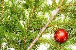 christmas decoration  ornament  ball