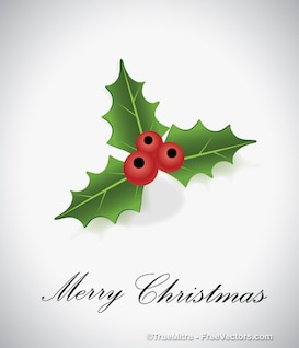 Christmas leaf with red berry