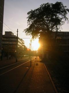 City dusk, dusk