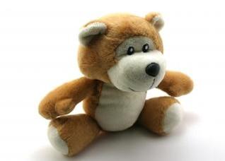 Classic teddy bear, concept