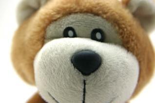 Classic teddy bear, gift