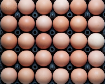 Close up of eggs in black plastic container, top shot