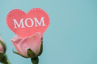 Close-up of flower with paper heart for mother's day