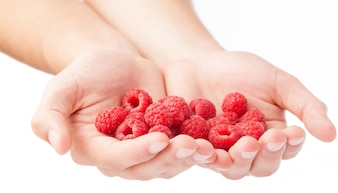 Close-up of hands holding fresh raspberries