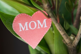 Close-up of plant with heart for mother's day