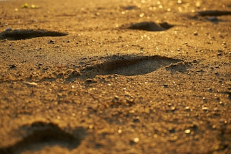 Close-up of sandy beach with footprints