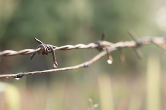 汚れた有刺鉄線で水滴を閉じます。