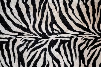 Close up zebra fur texture background.