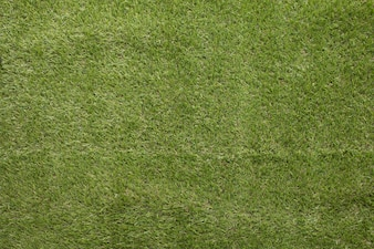 Closeup of Artificial Grass Field Top View Texture for made background