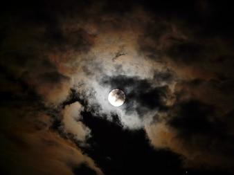 Clouds darkness pale moonlight gloomy night moon