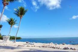 Coast of The Keys