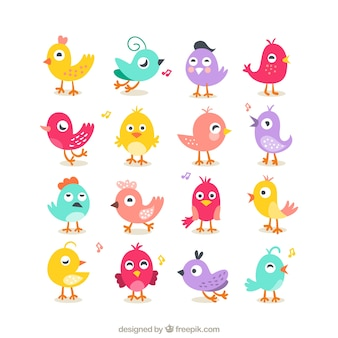Collection of cute birds