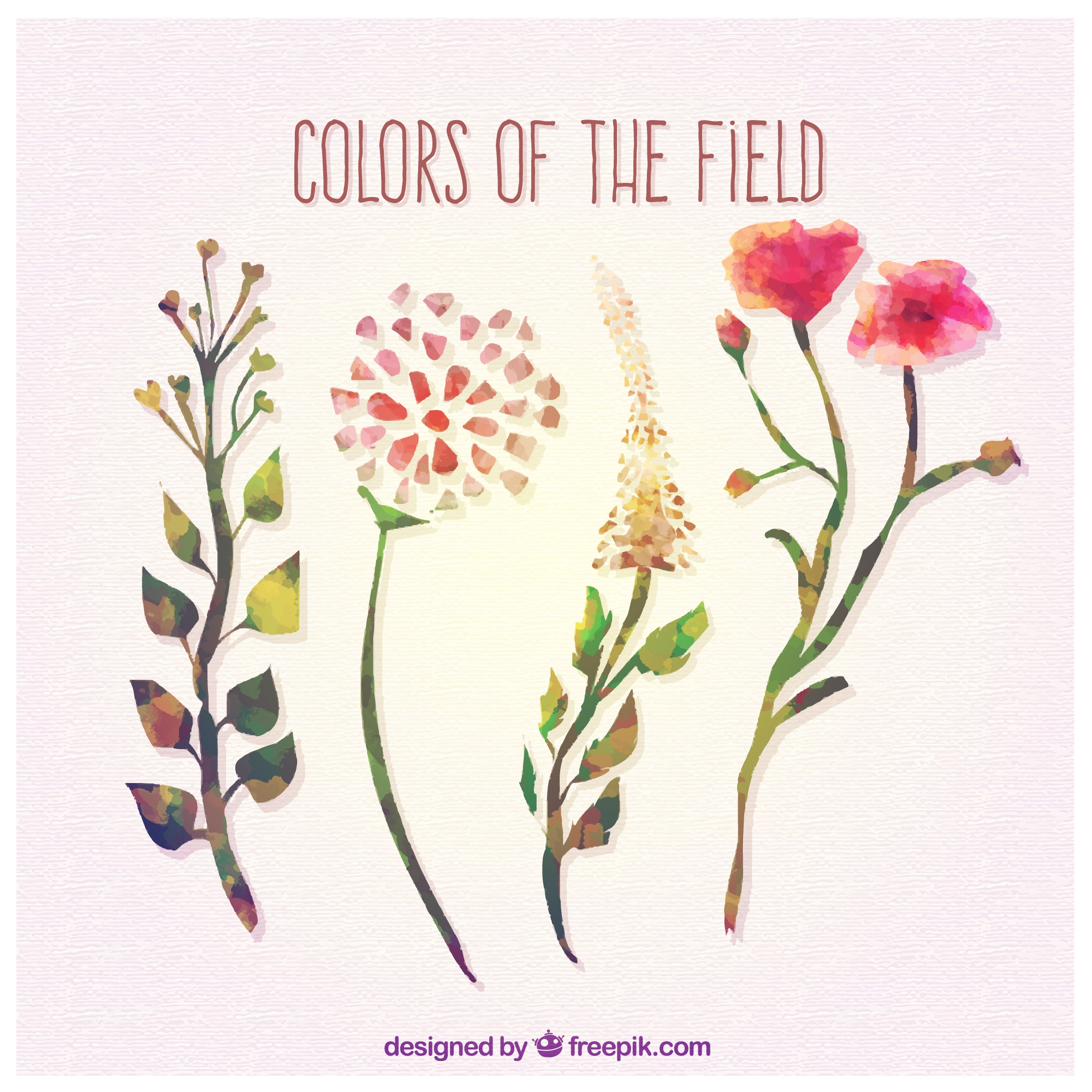 Colors of the field