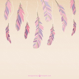 Colour feathers vector
