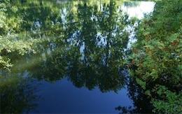 Comme un miroir dans l'eau