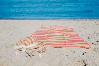 Composition of seashells and blanket