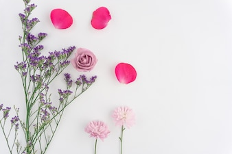 Composition with flowers and petals