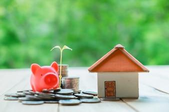 家のためのお金を節約の概念。ビジネスファイナンスとマネーのコンセプト、将来の準備のためのお金を節約する。木はコインで栽培